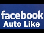 Facebook Autolike New 2013